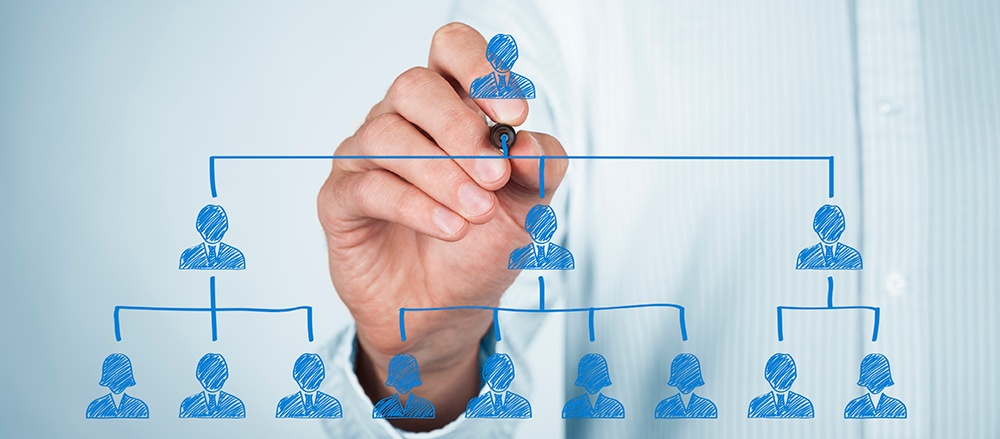 organizational-structure-1000px